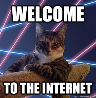 internet-meme-cat-10