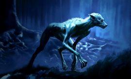 RemusLupin_WB_F3_ConceptOfLupinInForestAsAWerewolf_Illust_080615_Land